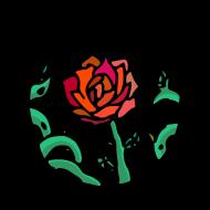 camée rose atelier kôta illustration dessins boutique produits artist