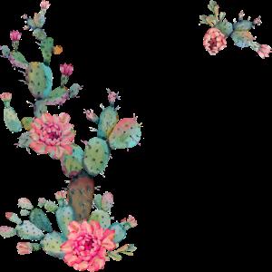 Go climb a cactus - schwarzer Text