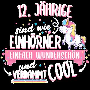 Geburtstag 12 Geburtstag Einhorn Spruch Party