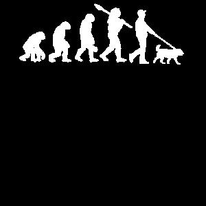 Hunde Hund Evolution