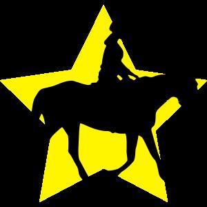 reiten stern silhouette icon logo reiterin