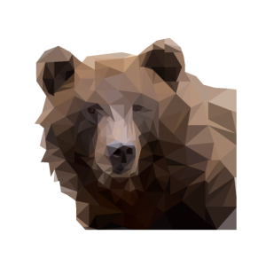 Bär polygon design bear