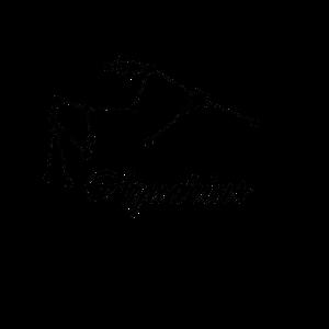 Sternzeichen Aquarius/Wassermann