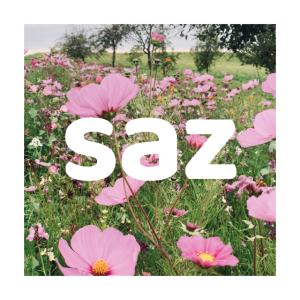schrecklich aber zart - saz flowers 001