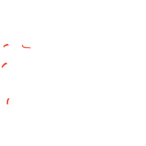 Made in Berlin echter Berliner