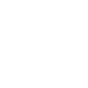Born to Grill Barbecue Grillen Sommer Grillmeister