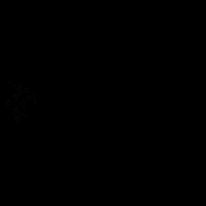 Crystal-Ice Logo schwarz