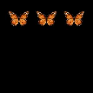 Aesthetic Monarch Butterflys