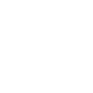 Historiker Historikerin