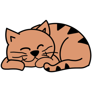 Schlafende Beige Katze / Cat