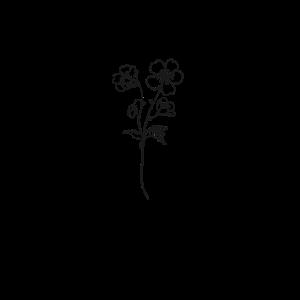 Flower Blume - Minimalistisch Abstrakt