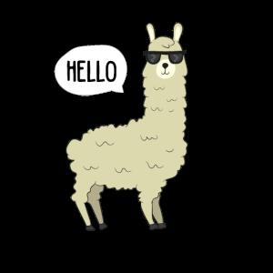 Lama - HELLO Lama mit Sonnenbrille
