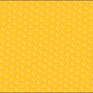 Gesichtsmaske Bienen Honig Maske Biene Waben Imker