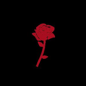 Rose, red rose, blume, rosette, flower, little ros