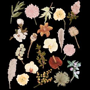 Vintage Boho Botanic Wildflower Flower Nature Love