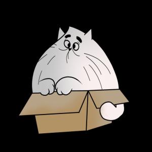 Dicke Katze Lustig Kätzchen Karton