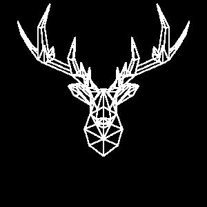 Hirsch Geometrie