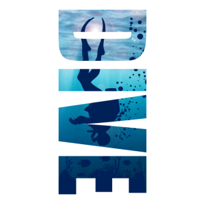 Taucher Dive Divemaster Tauchen Diver Meer