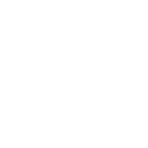 Aloha Hibiscus Hawaii