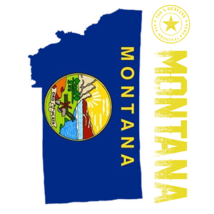 montana 129102901
