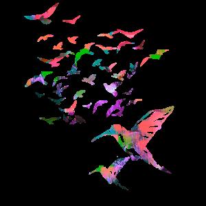vögel,kolibri, schwarm,graffiti,illustration,vogel