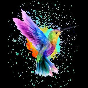 Kolibri Aquarell Graffiti