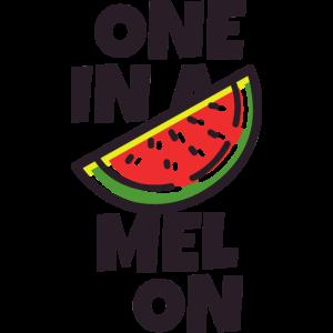 Einer in einer Melone
