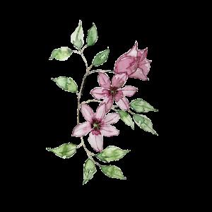 Blumenranke pink