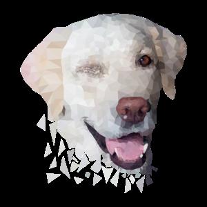 Labrador Hund Polygon