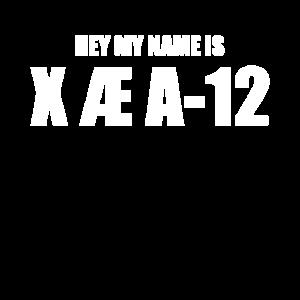 X Æ A-12 Musk Name Kyle