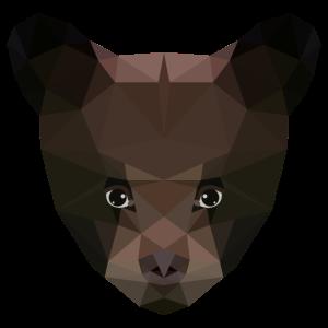 Bär Bärenjunges Bären low Poly Art Design
