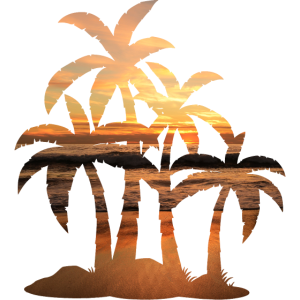 Sonnenuntergang Palmen Sommer