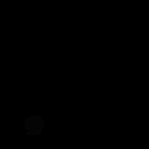 Fische Seestern Delfin Seepferdchen Krake Oktopus