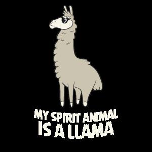Lamas Sind Meine Lieblingstiere Llama