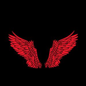 Flügel Engelsflügel himmlisch