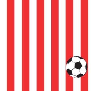 rot weiß Fussball