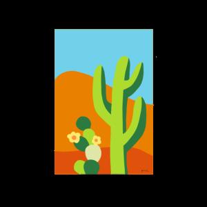 Wüstenkaktus