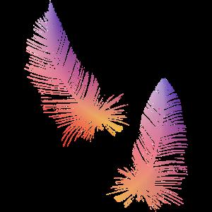 Federn orange rosa und lila gefärbt