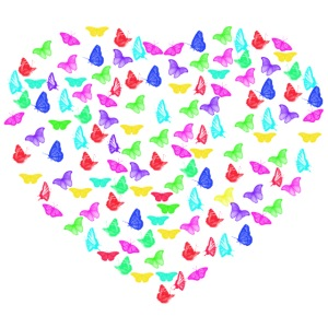Butterflys heart