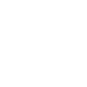 OWNED BY MASTER
