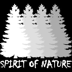 Natur, Outdoor, Wald