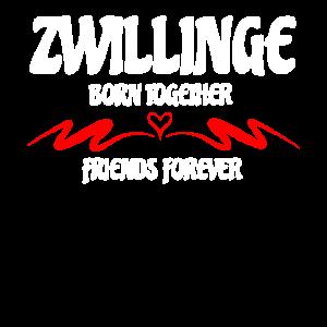 Zwillinge, Born Together Friends Forever, Geschenk