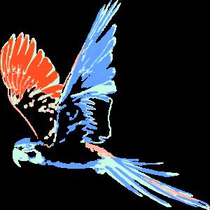 Papagei, blau, Vogel, Aquarell, fliegen, ara