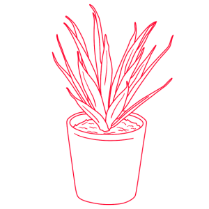Plant, Pflanze, Outline, Line Art, Garten