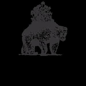Bär Baer Braunbaer Tierschutz Tierschuetzer Natur