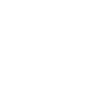 Cooles Pferde Shirt - Bestes Team Pferd + Mensch