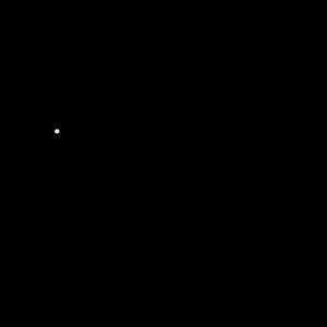 Schleifisch schwarz
