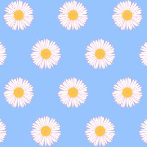 Gänseblümchenmuster auf himmelblauem Hintergrund