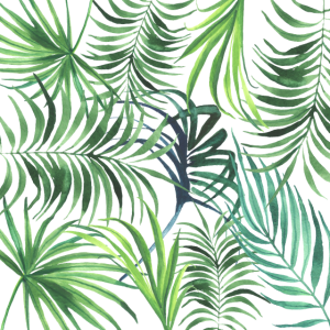 Blätter Floral Palmen Tropisch Urwald
