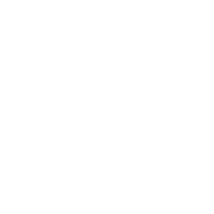 Kieselalge/heilige Geometrie/Fibonacci Spiraleweiß